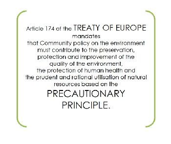 The-Precautionary-Principle