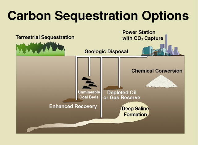 CarbonSequestration
